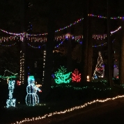 The Wright Family Christmas Lights | Wake Forest Historical Museum ...
